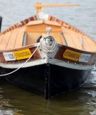 Barca elèctrica L'Albufera
